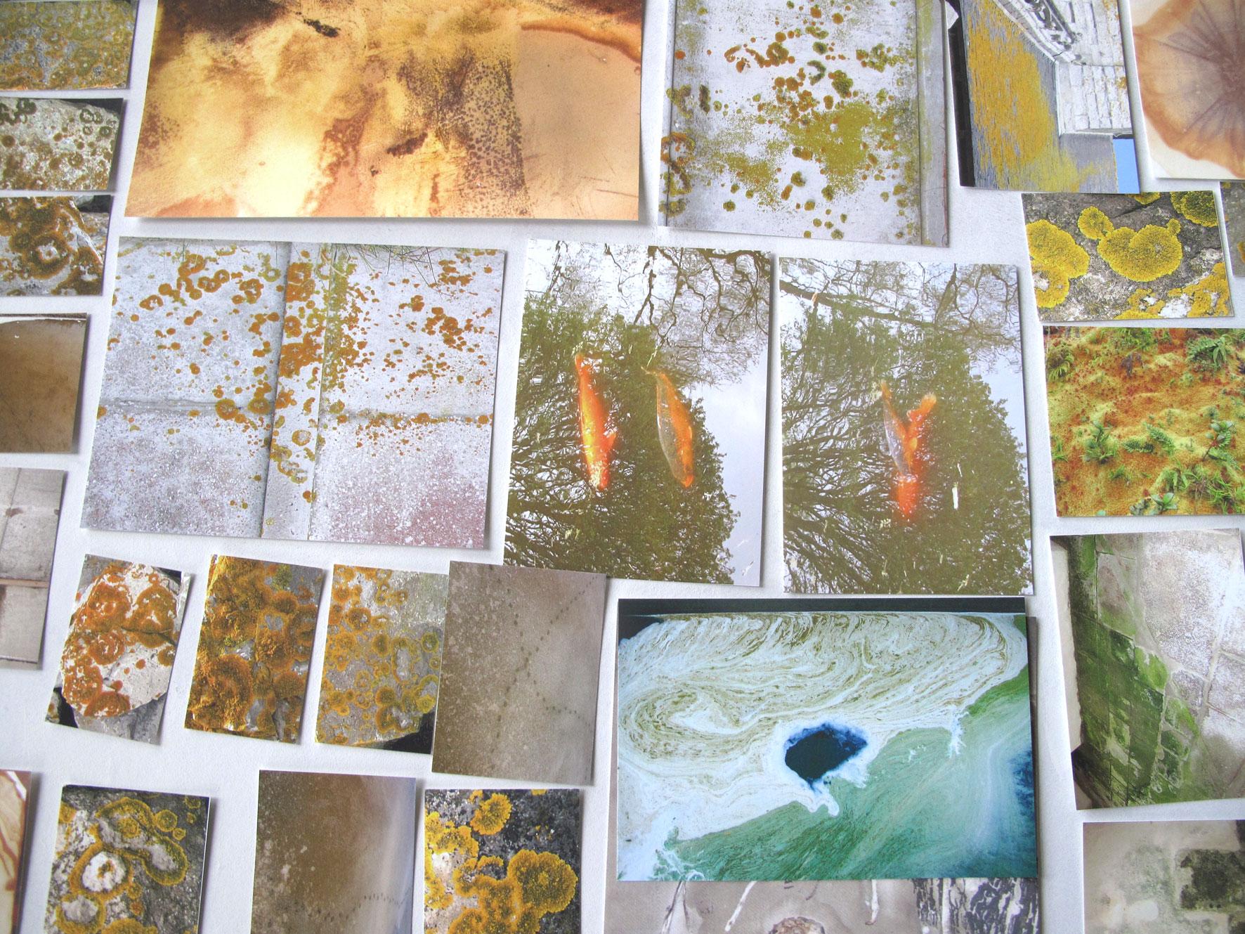 oranje-pagina-uit-archief